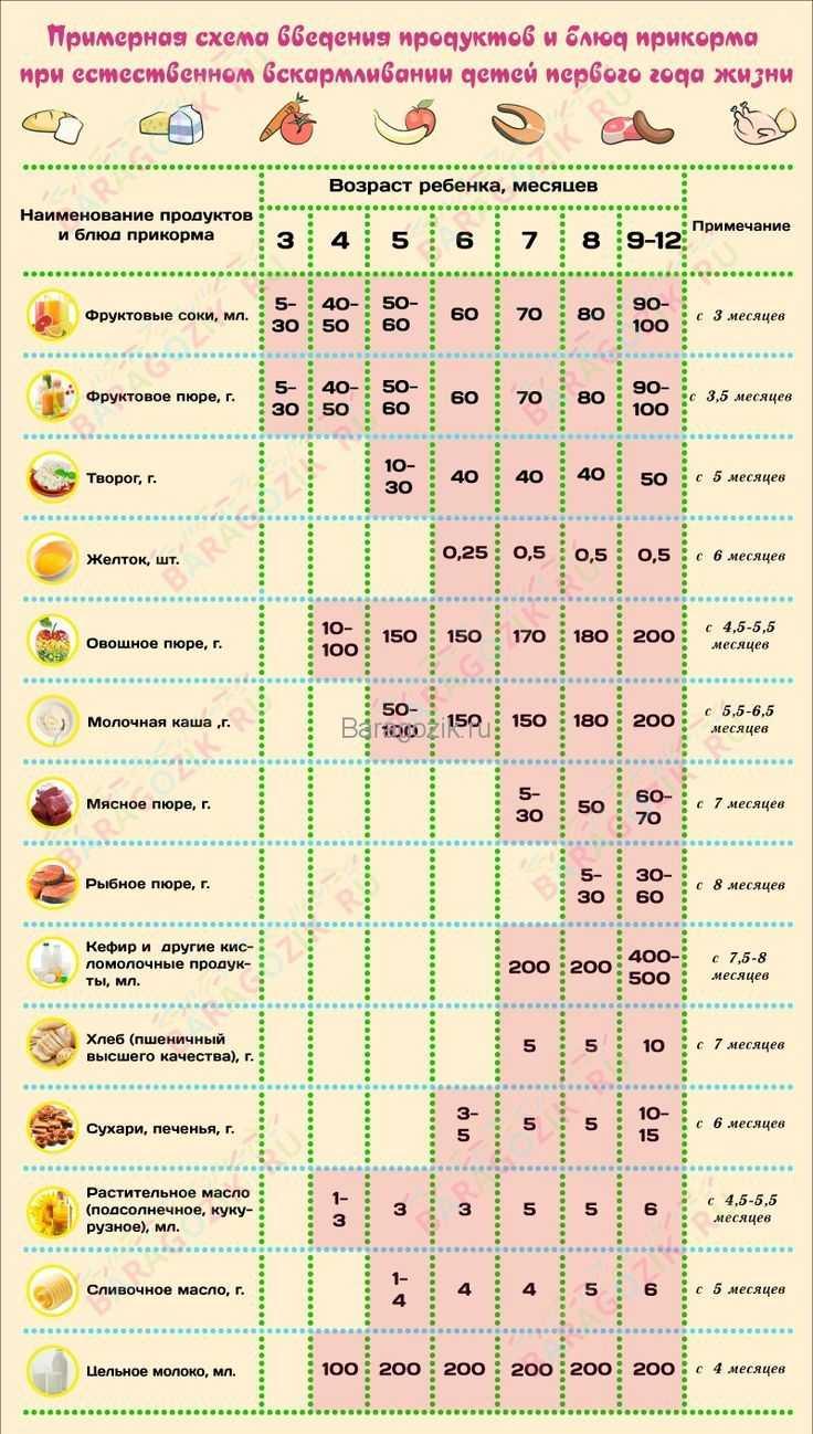 Когда можно давать ребенку сушки, баранки: с какого возраста и со скольки месяцев, рецепт