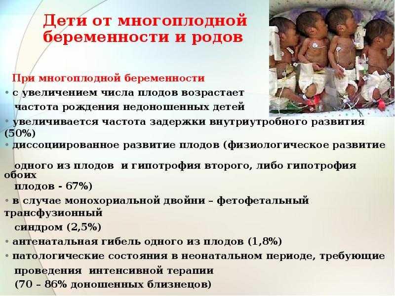 Многоплодная беременность после эко. двойня после эко: все плюсы и минусы «двойного успеха.