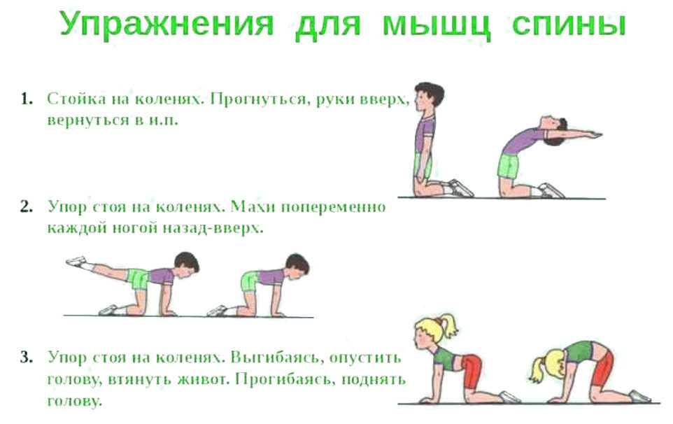 Гимнастические упражнения для начинающих детей дома, на физкультуре. фото, описание
