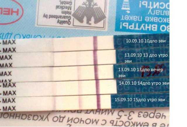 Через какое время можно узнать о беременности: через сколько дней покажет тест и на какой день задержки, как понять что беременна по ощущениям?