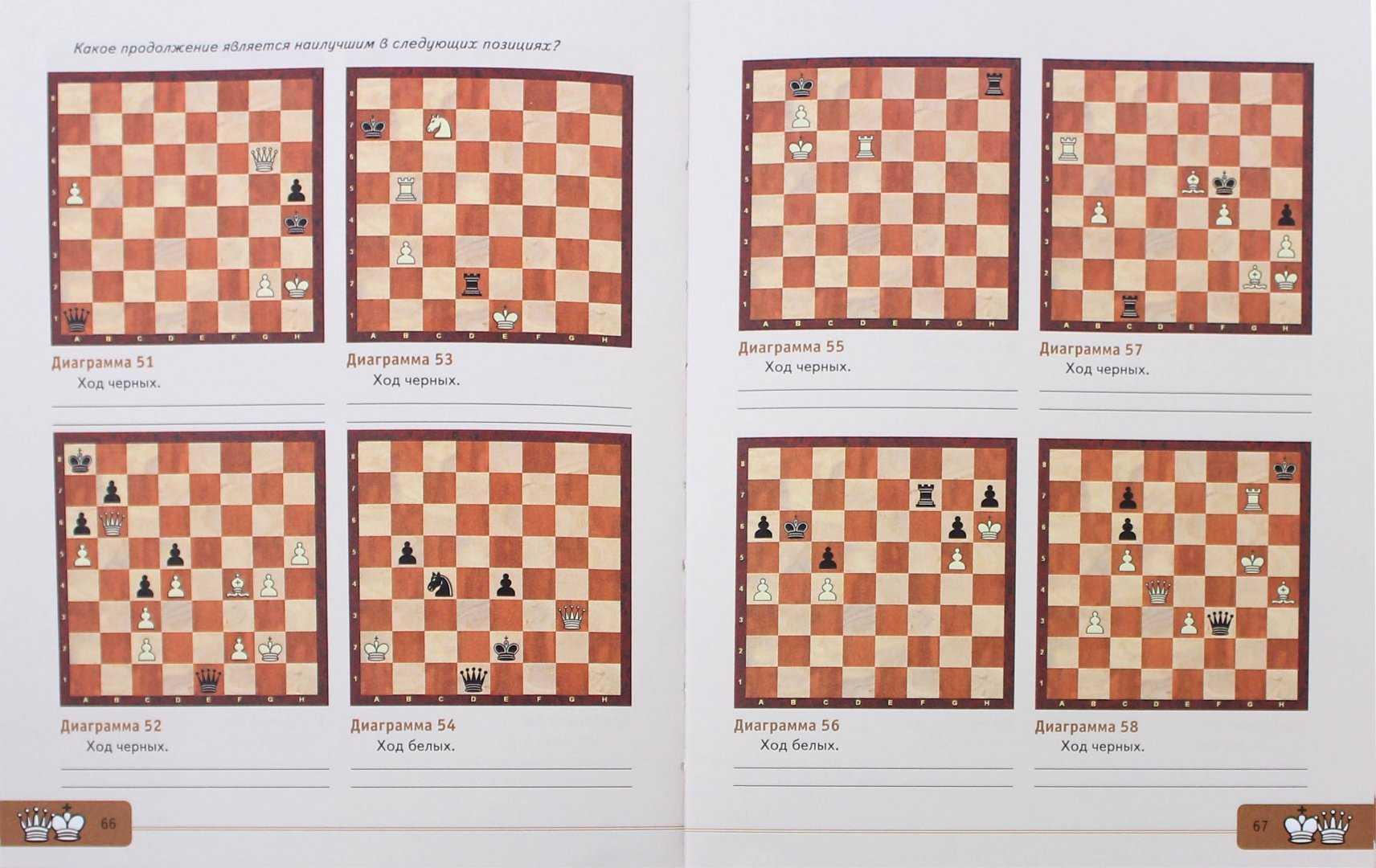 Ход конем. шахматы для малышей. когда начинать обучение ребенка шахматам