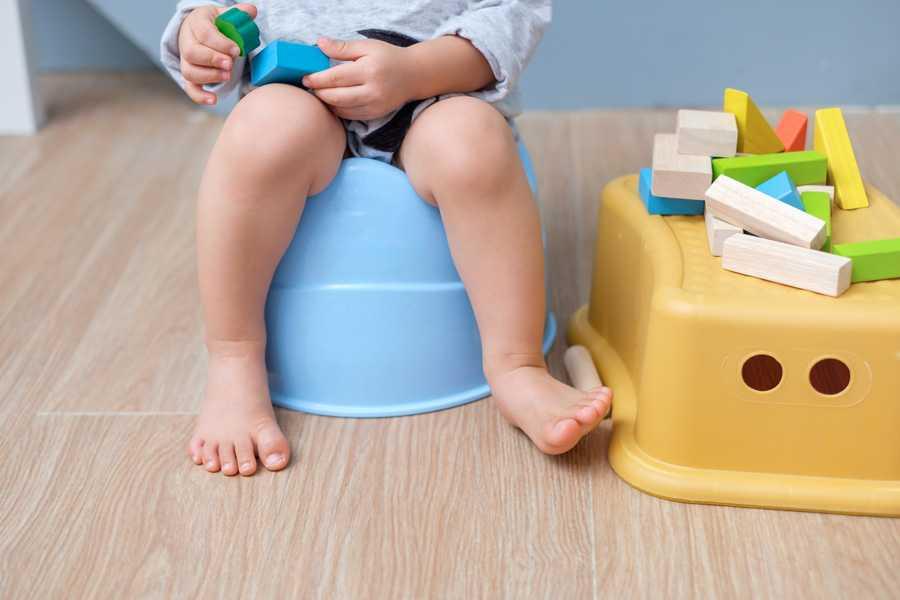 Ребенок перестал ходить на горшок: почему не просится на горшок в 2, 3 и 4 года, причины и что делать