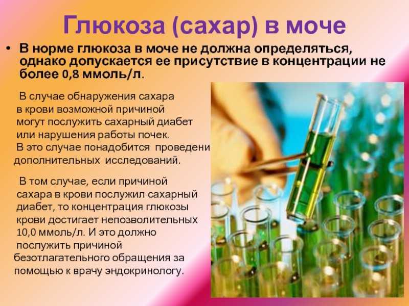 Сахар в моче у ребенка: глюкозурия, лечение, нормализация - kardiobit.ru