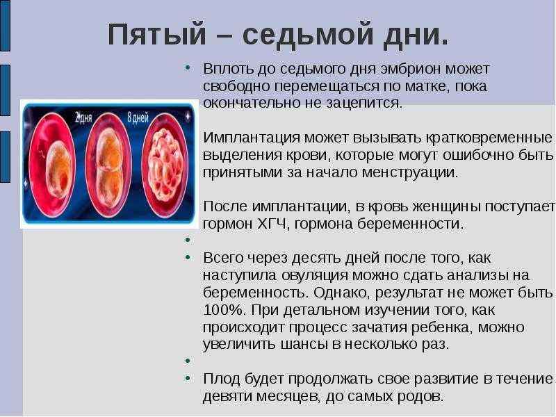 Выделения при имплантации эмбриона (10 фото): обязательно ли должно быть кровяное пятно при прикреплении в матку, ощущения и признаки