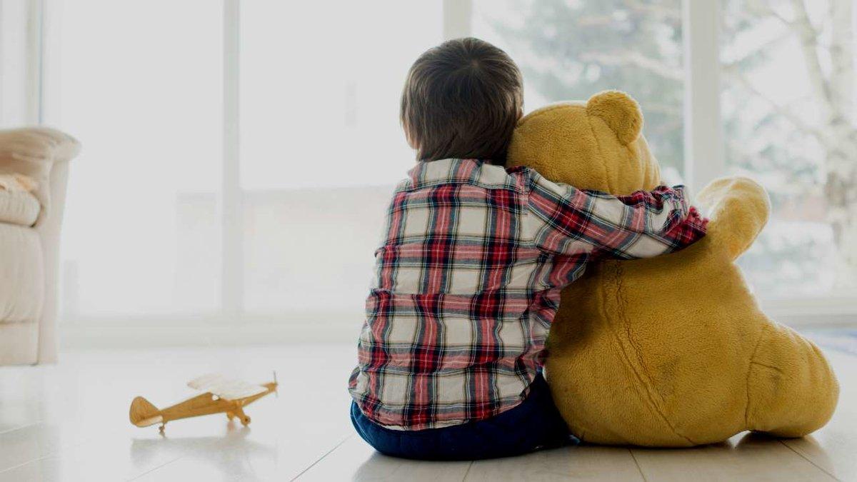 Двое детей: как поделить игрушки. 3 простых совета. методика подели игрушки
