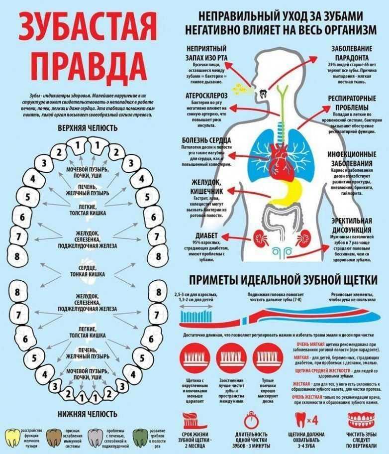 Болезни зубов: психосоматика (свищ, зубная боль на левой и правой стороне, кривые зубы и проблемы с деснами)