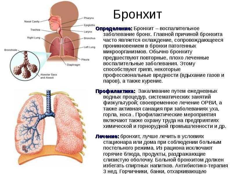 Бронхит у грудничка – признаки и лечение