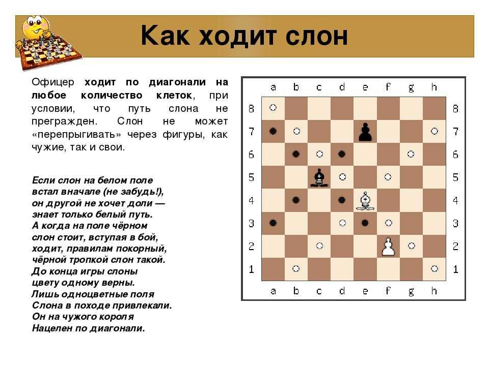 14 лучших бесплатных приложений для обучения шахматам - все курсы онлайн