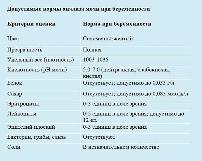 Мазок на флору у женщин: таблица норм с расшифровкой результатов