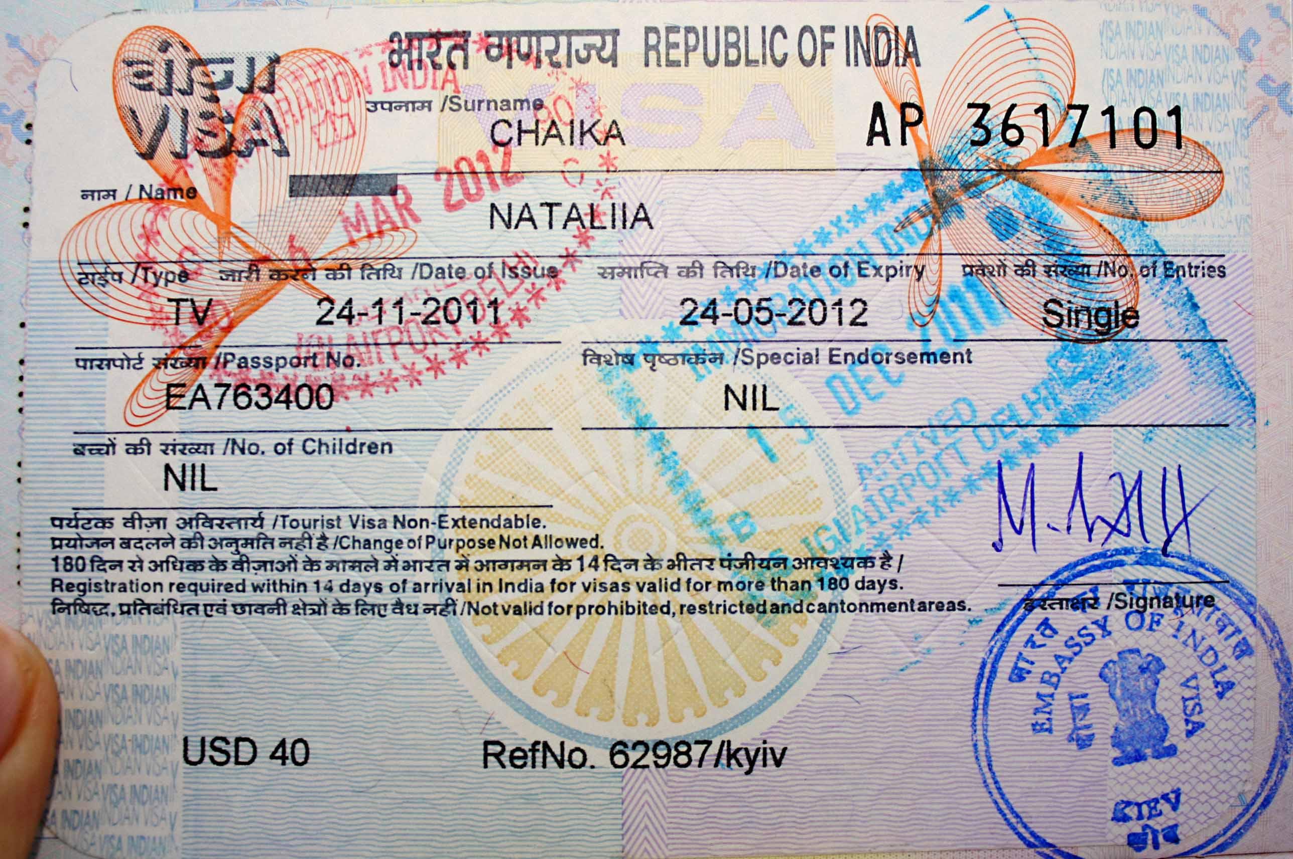 Виза в индию — оформление визы в индию самостоятельно: документы и стоимость