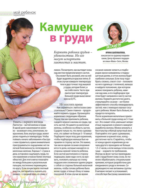 Температура у кормящей мамы: чем сбивать? нужно ли завершать гв?