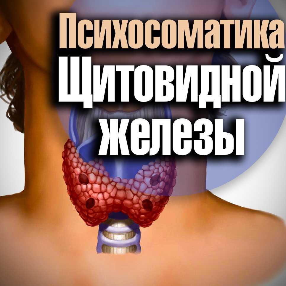Психосоматика щитовидная железа. гипер- и гипотиреоз.