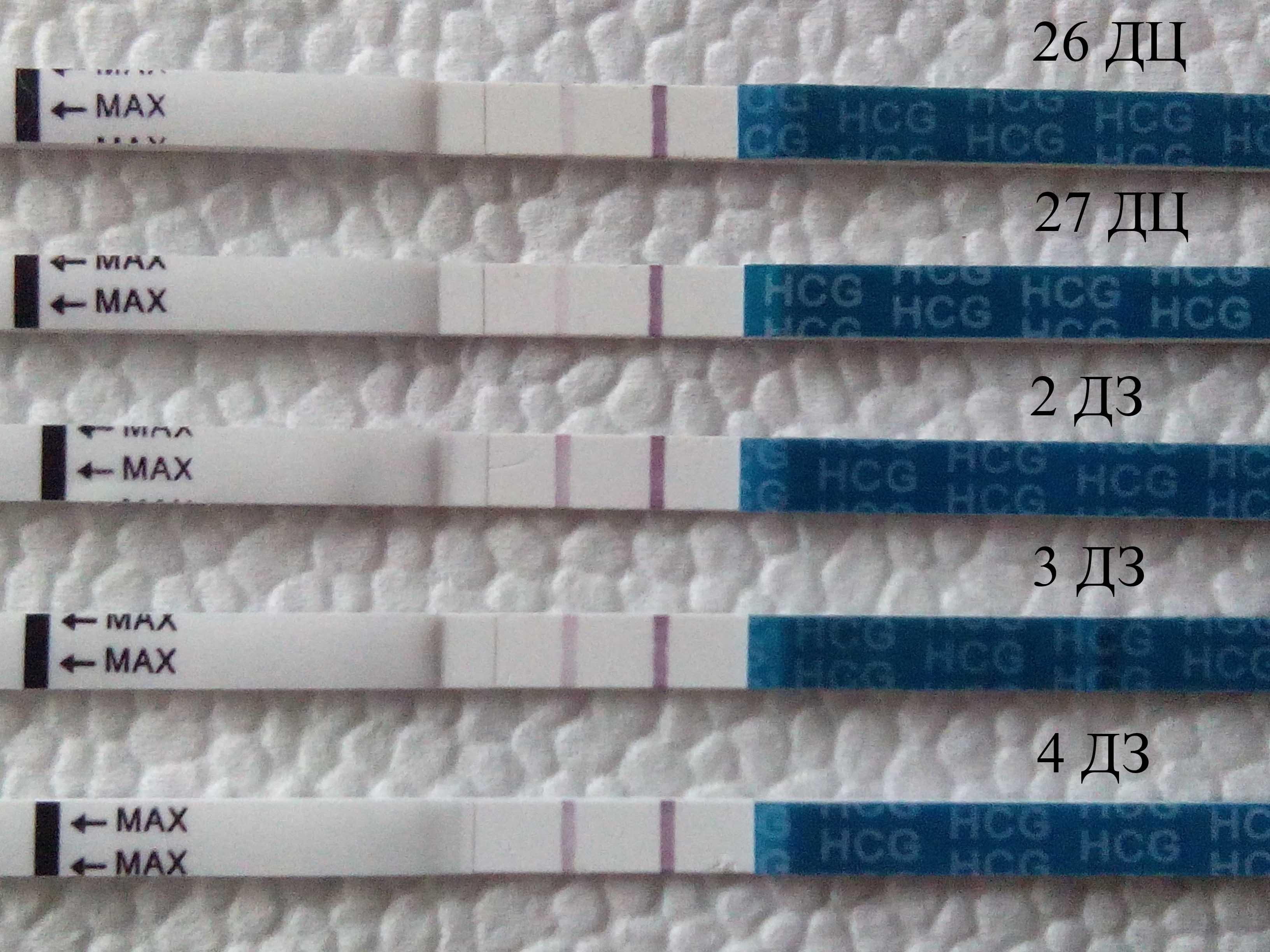 В какое время суток лучше делать тест на беременность? обязательно ли делать тест утром или можно днем, вечером или ночью? в любое ли время тест покажет правильный результат?