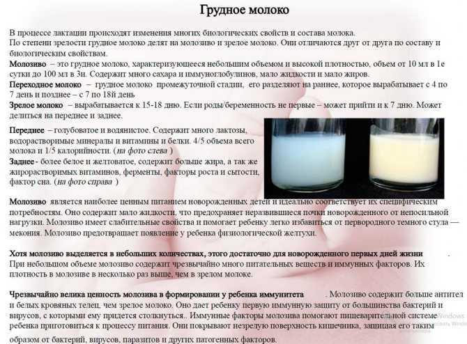 Молозиво при беременности: как выглядит, на каком сроке появляется | parnas42.ru