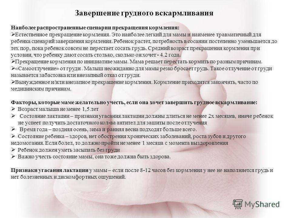 Беременность при грудном вскармливании (гв): первые признаки | nestle baby