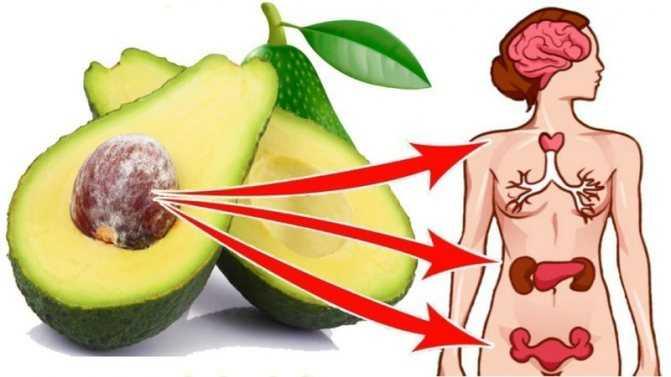 Можно ли есть авокадо при беременности. авокадо при беременности: польза и вред, особенности употребления