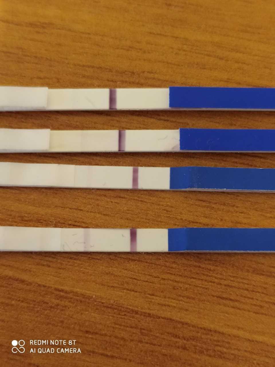 Могут ли ошибаться тесты на беременность и как часто это бывает