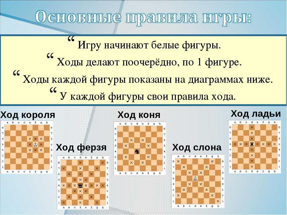 Как играть в шахматы для начинающих: видео игр с нуля для детей, правила игры