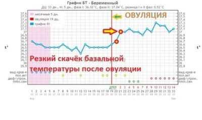 Температура после эко