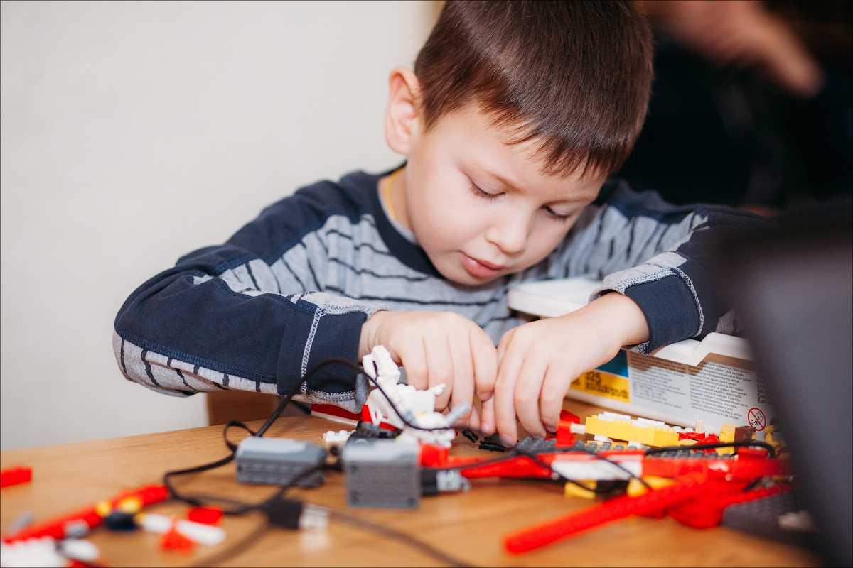 Лучшие бесплатные и платные онлайн-курсы робототехники для детей: направления, цены на уроки