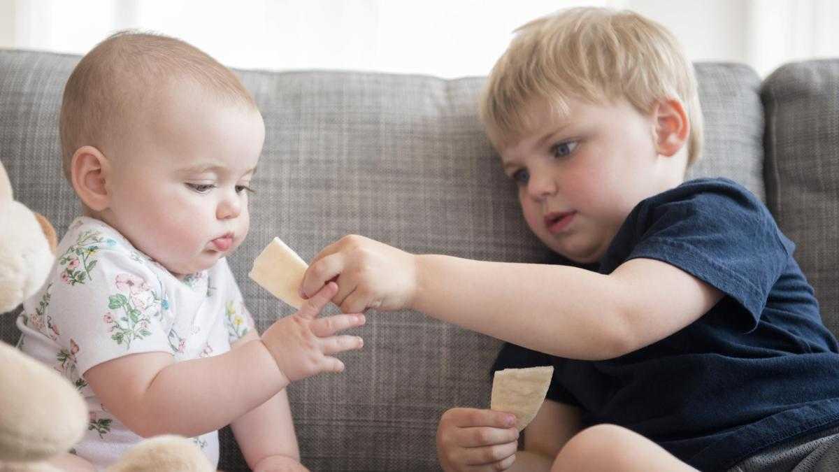 Жадный ребенок: как перевоспитать и научить делиться
