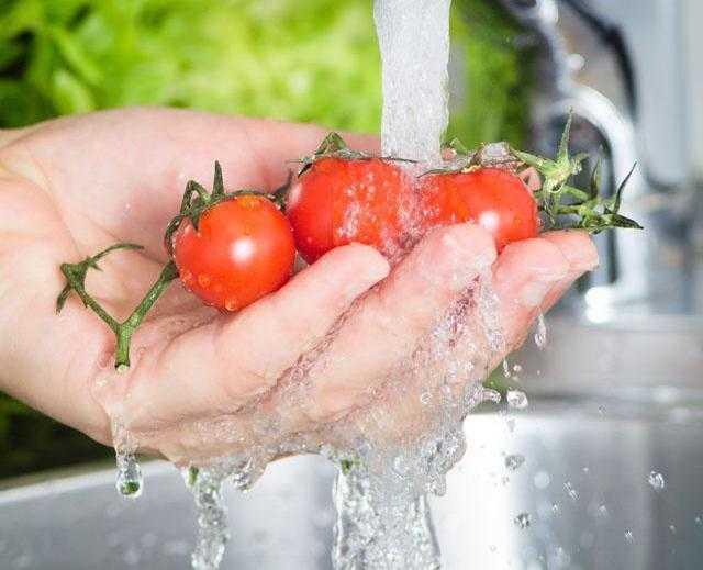 Соленые зеленые помидоры при беременности. можно ли беременным кушать помидоры? противопоказания и вред