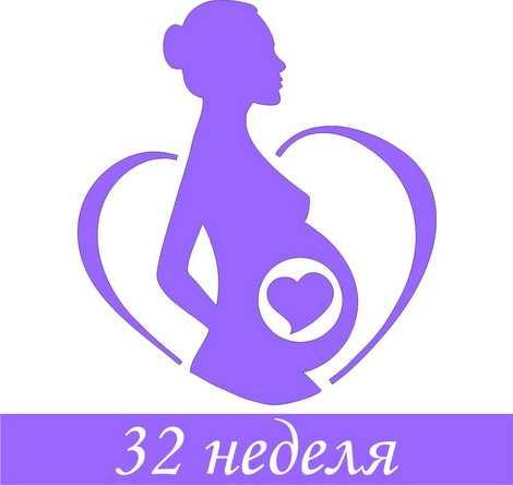 24 неделя беременности: что происходит с мамой и как развивается малыш, фото и размеры плода