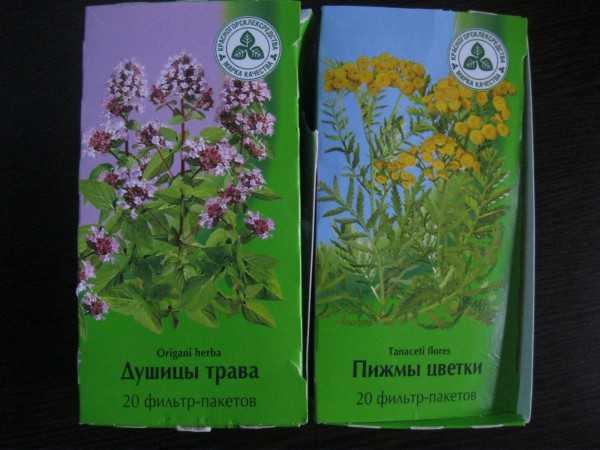 Травы при беременности   опасные и полезные травы во время беременности   компетентно о здоровье на ilive