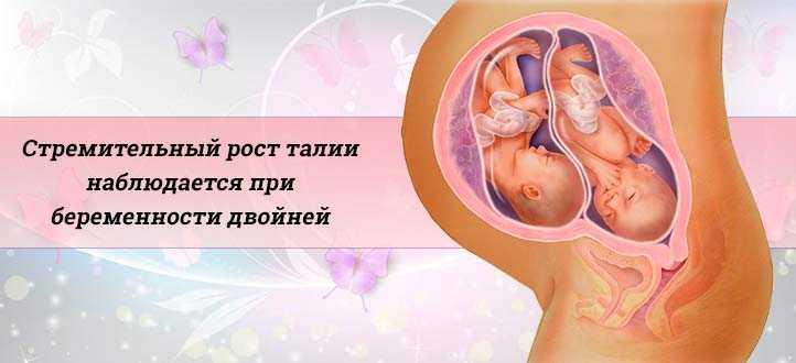Узи 4 недели беременности от зачатия: можно ли делать, что покажет исследование (фото) и видно ли эмбрион, размеры плода, нормы