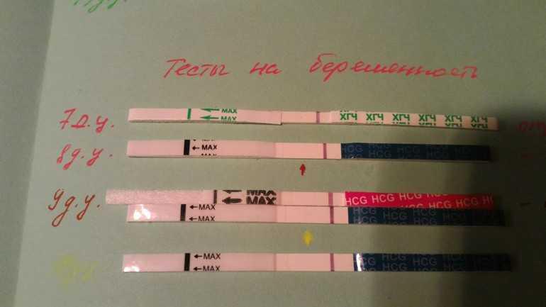 С какого срока тест на беременность показывает положительный результат после зачатия, когда, на какой день его можно делать