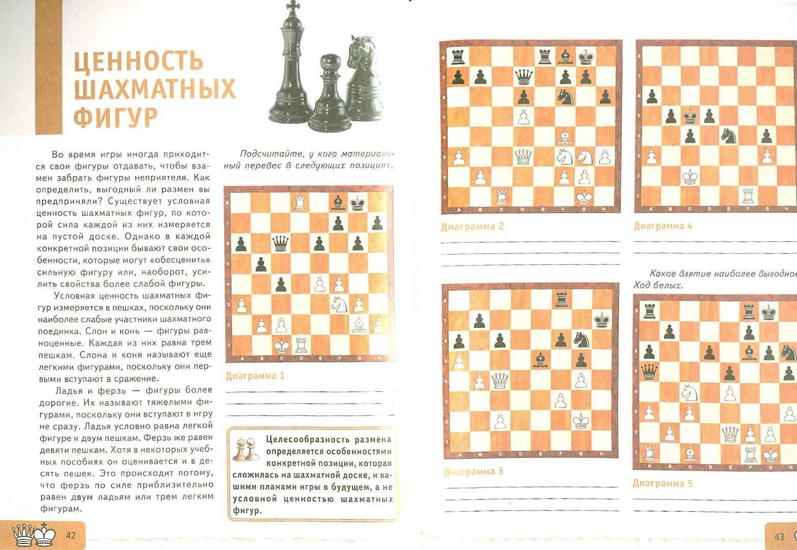 Шахматы. игры в шахматы, занятия, соревнования