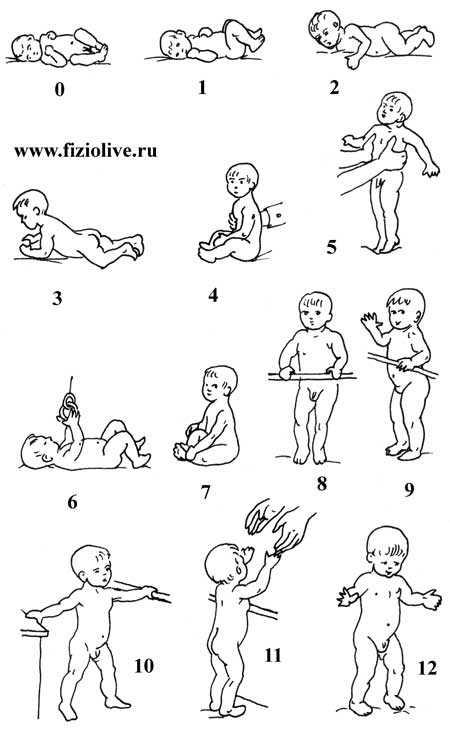 Массаж при кривошее: 10 эффективных приемов массажа