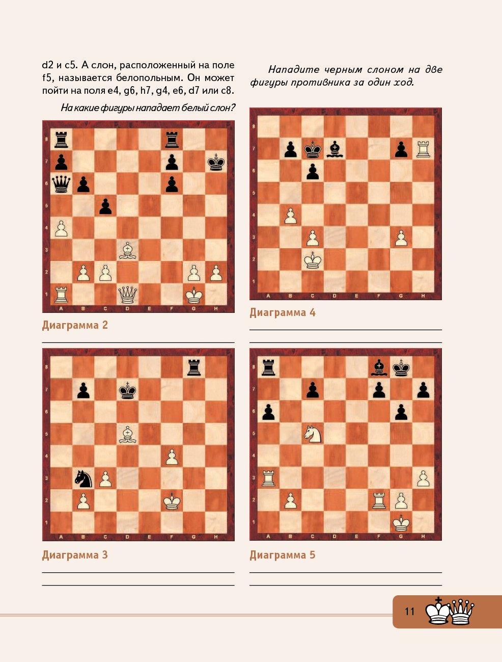 Шахматные фигуры | энциклопедия шахмат | fandom