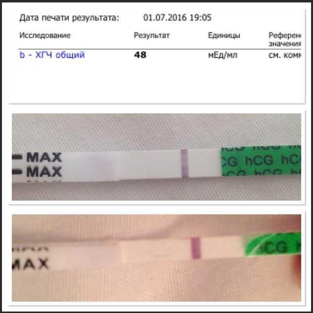 Полоска призрак на тесте на беременность. что это означает?