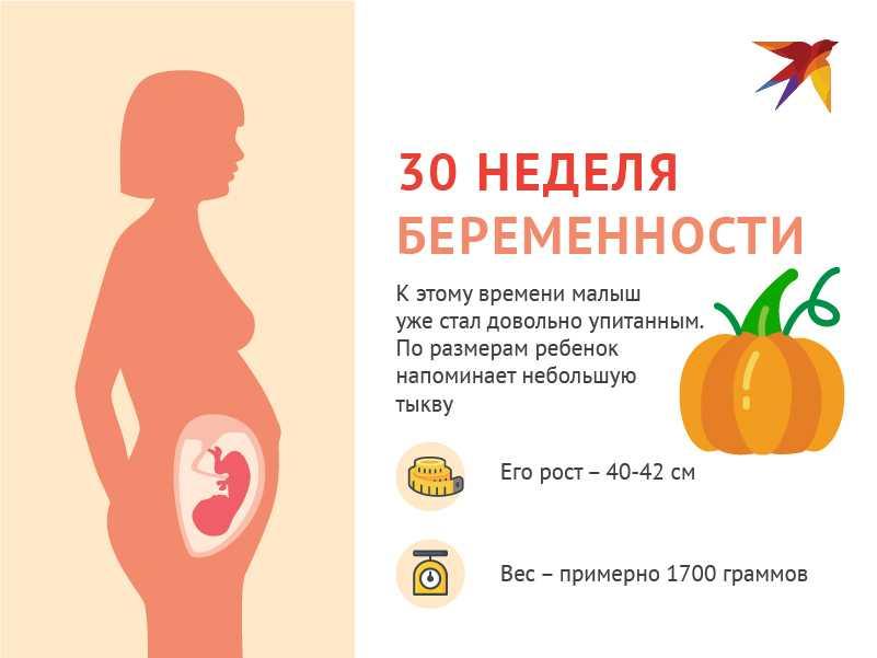 30 неделя беременности: что происходит на этом сроке?