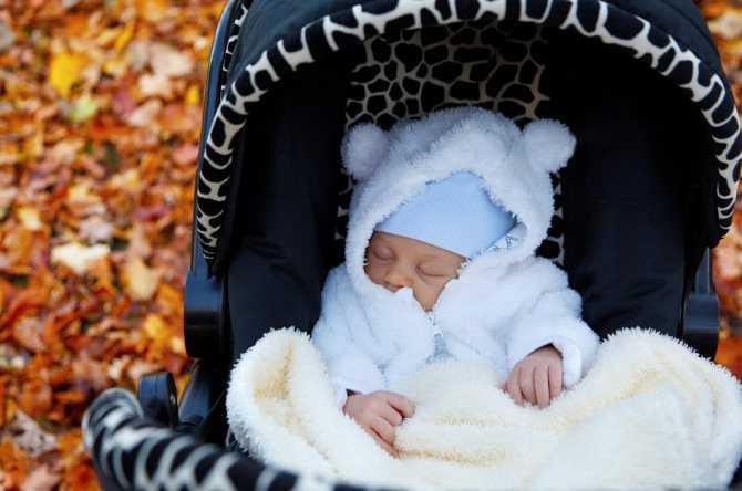 Коляска-люлька (53 фото): вариант для новорожденных, большие детские модели для погодок, рейтинг лучших автолюлек 2020