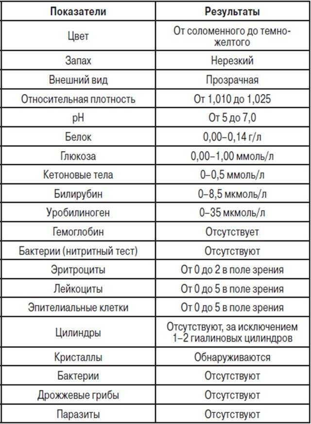 Мочевой осадок – характеристики и нормы элементов мочевого осадка в общем анализе мочи у детей и у взрослых