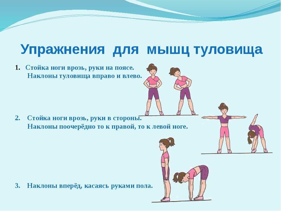 Гимнастика в домашних условиях: 13 упражнений для детей. гимнастика для детей 4 лет, упражнения для пресса, тренер по гимнастике, растяжка для детей