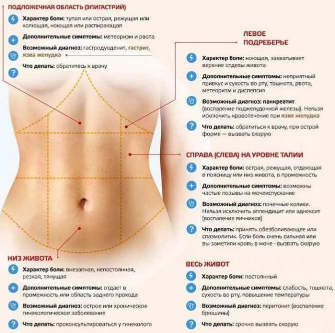 Боли при овуляции и после неё, причины болезненных ощущений: тянет низ живота, яичники, поясницу
