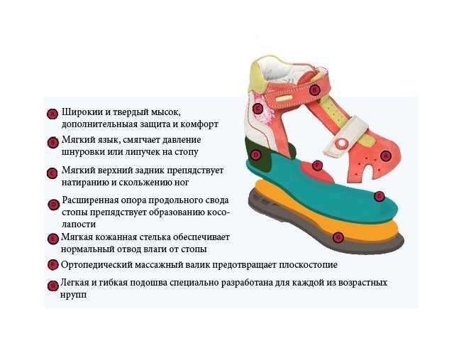 """""""на вырост"""": как определить размер стопы ребенка и какой запас должен быть в детской обуви?"""