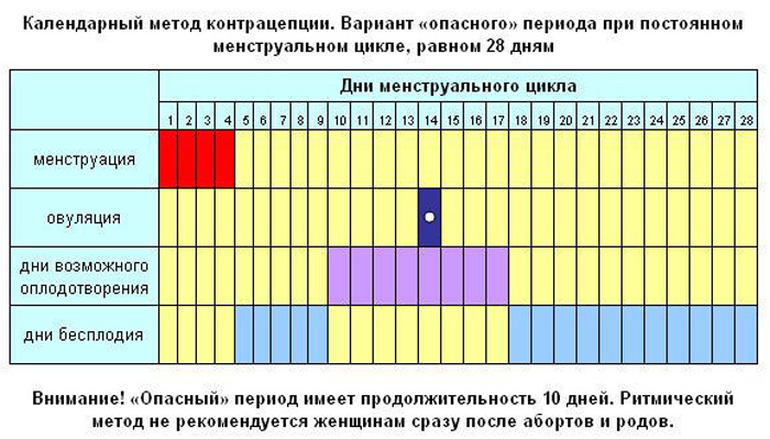 Как рассчитать овуляцию: расчет по бесплатному онлайн калькулятору, составление самого точного женского календаря при нерегулярном цикле
