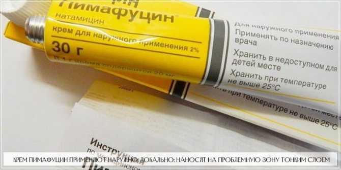 Пимафуцин при беременности: инструкция по применению