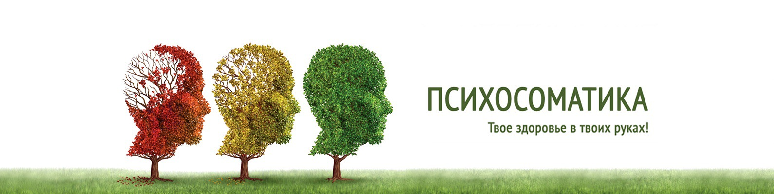 Болезни почек психосоматика — почки