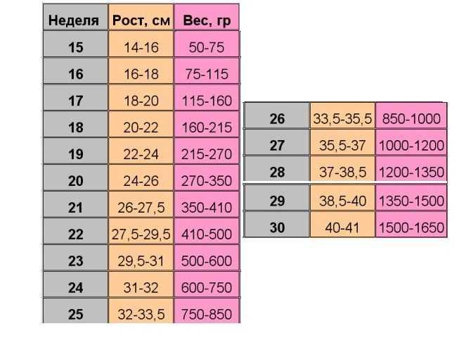 Норма веса плода в зависимости от недели беременности: таблица для мальчиков и девочек