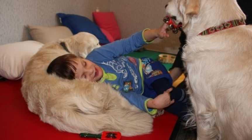 Иппотерапия для детей с аутизмом