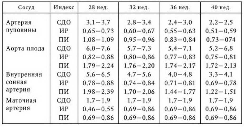 Допплерометрия при беременности: что это, норма и рассшифровка
