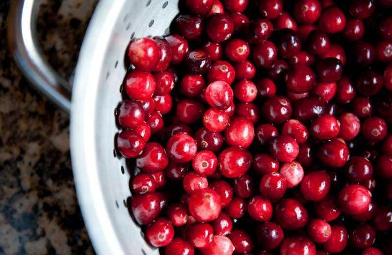 Клюква при беременности: чем полезна эта ягода, рецепты / mama66.ru