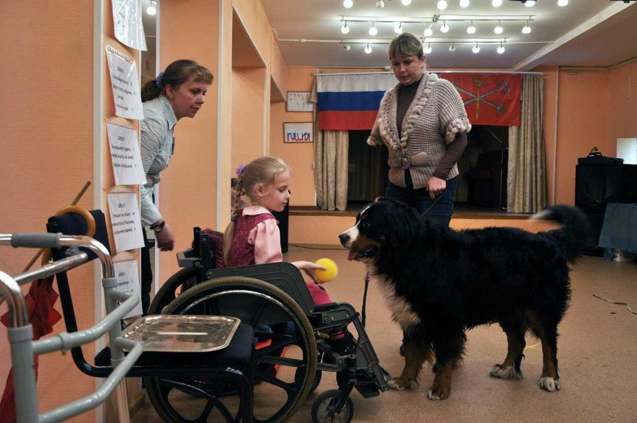Особая собачка | милосердие.ru