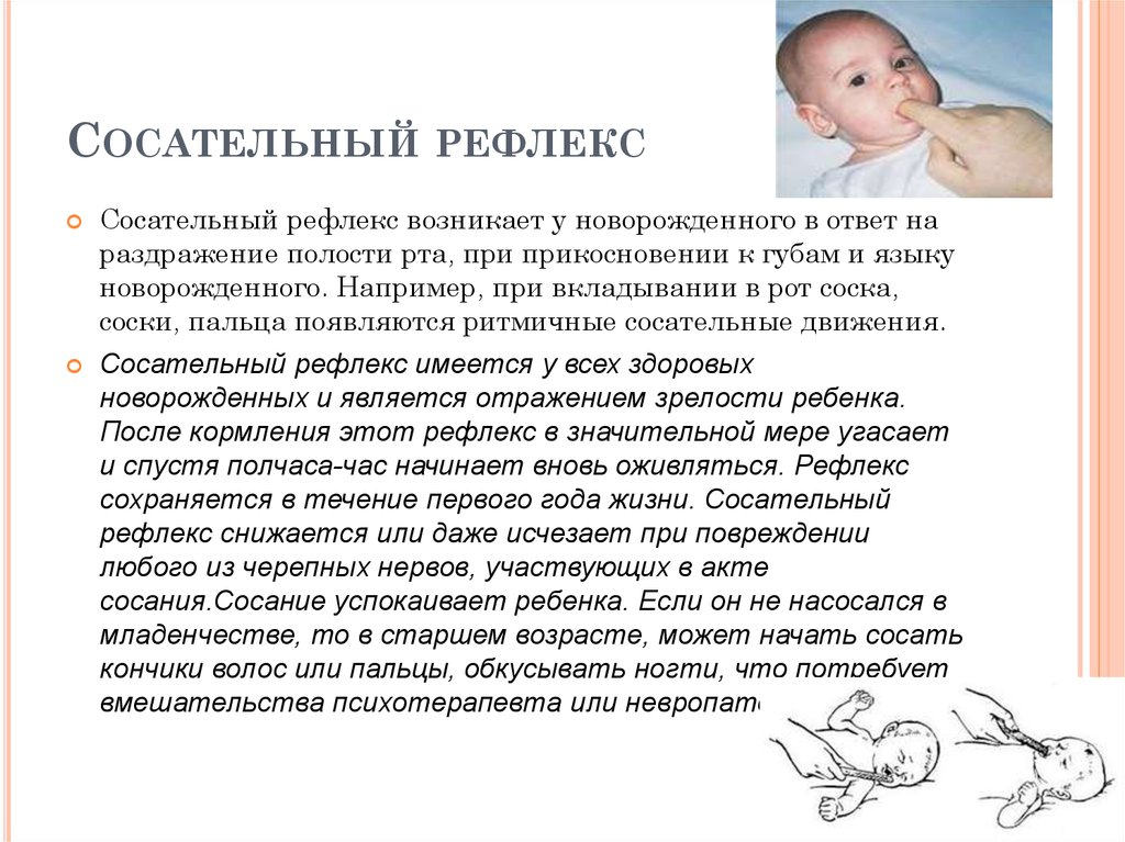 Хватательный рефлекс у новорожденных (робинсона): что делать, если рефлекс слабый или отсутствует