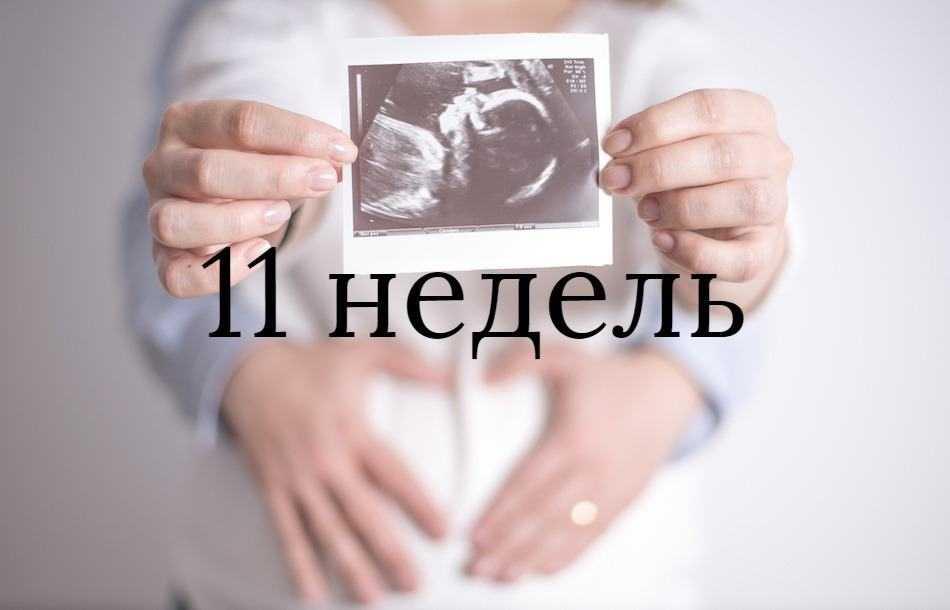 10 неделя беременности: что происходит с малышом и мамой, фото, развитие плода